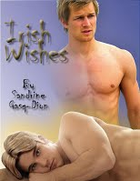 12 - Irish Wishes - Cover